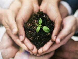 José Simón Elarba Haddad Cuidar el medioambiente desde tu trabajo