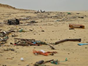 Jose Simon Elarba ONU advierte que la tierra será inhabiyable en 2050