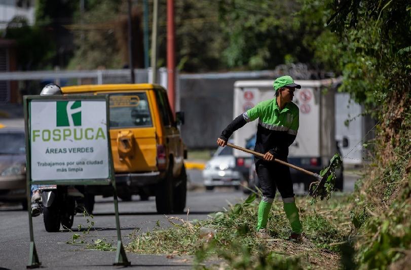 José Simón Elarba-Fospuca realizarán jornada de plantación de Apamates en la Plaza Santa Inés