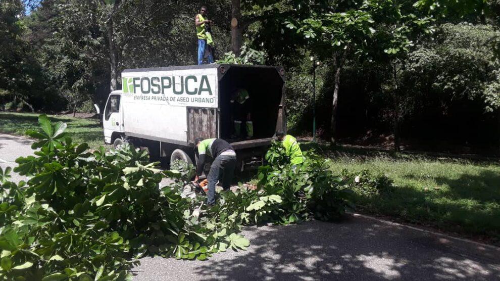José-Simón-Elarba-Haddad-Fospuca-impulsó-jornadas-de-limpieza-y-desmalezamiento-durante-esta-semana